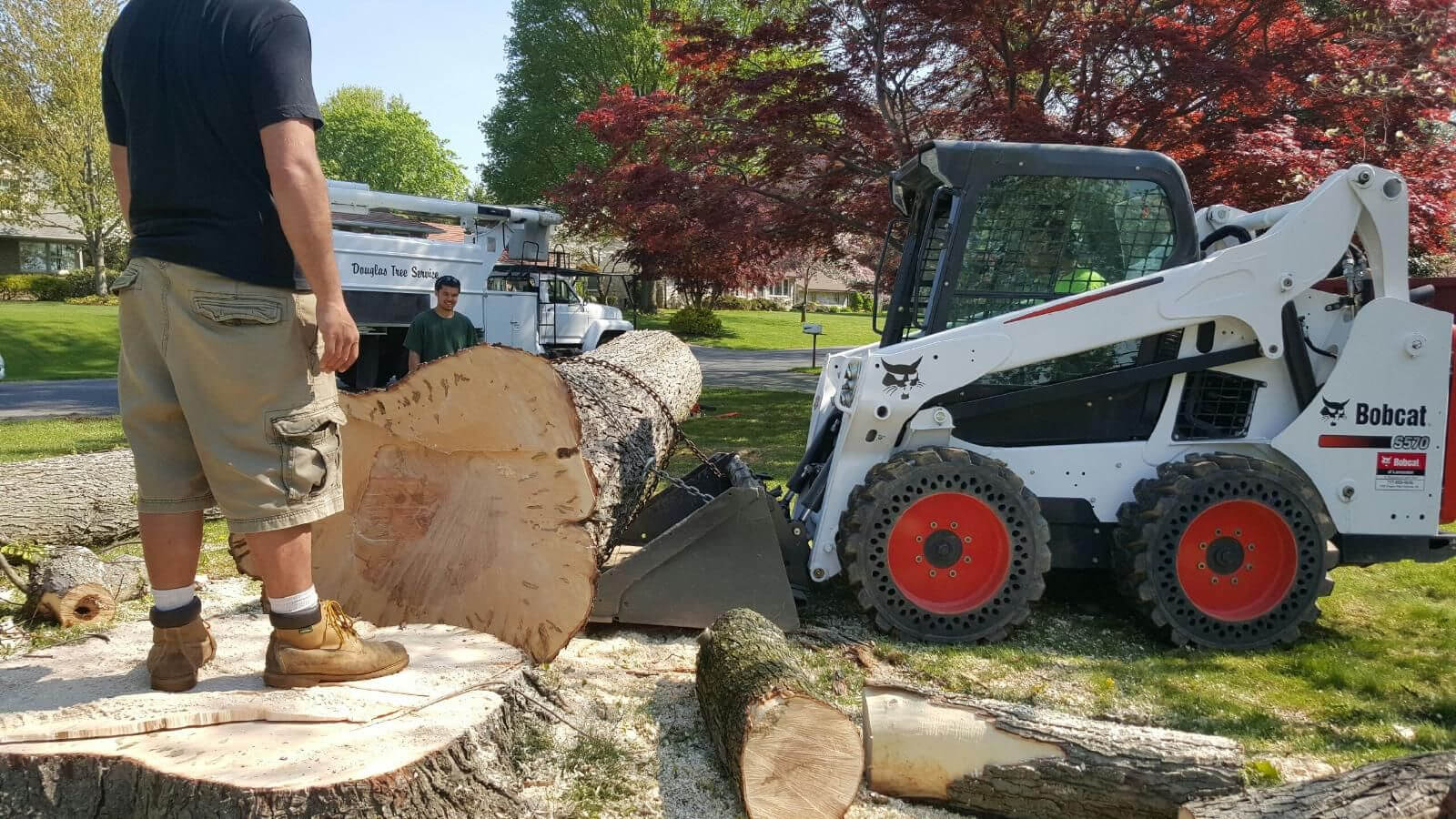 Services-Fort Lauderdale FL Tree Trimming and Stump Grinding Services-We Offer Tree Trimming Services, Tree Removal, Tree Pruning, Tree Cutting, Residential and Commercial Tree Trimming Services, Storm Damage, Emergency Tree Removal, Land Clearing, Tree Companies, Tree Care Service, Stump Grinding, and we're the Best Tree Trimming Company Near You Guaranteed!